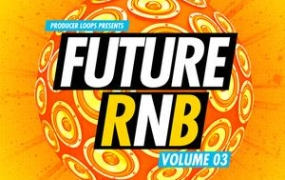 Producer Loops Future RnB Vol 3 ACiD WAV MiDi REX