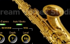[超棒萨克斯音源小插件]Dvs Saxophone | Download